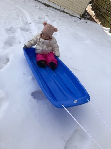 girl toddler on a sled outside in the snow