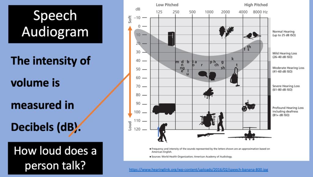 speech audiogram measured in decibels showing everyday noise levels
