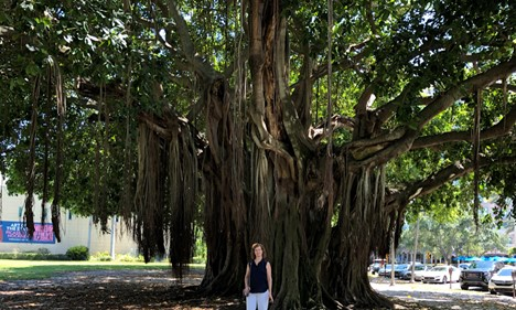 Cheri standing in front of a banyan tree